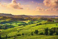 Panorama för Langhe vingårdsolnedgång, Barolo, Piedmont, Italien Europa arkivbild