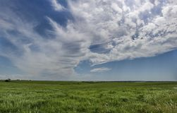 Panorama för Oklahoma sommarprärie royaltyfri bild