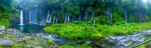 Panorama för Shiraito vattennedgång Royaltyfri Foto