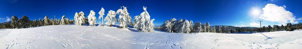 Panorama för snö 360 Arkivfoto