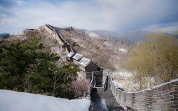 Panorama för stor vägg i vår efter snö, med persikablomningen Arkivbilder