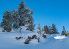 Panorama fantástico del invierno de las montañas Imagenes de archivo