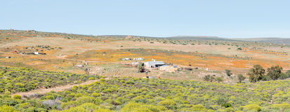 Panorama of a farm in Namaqualand Stock Image