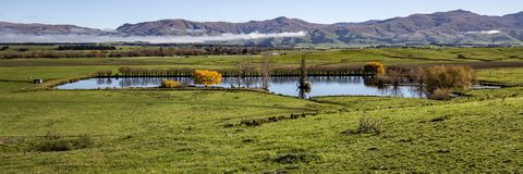 Panorama farm scene, Central Otago stock photography