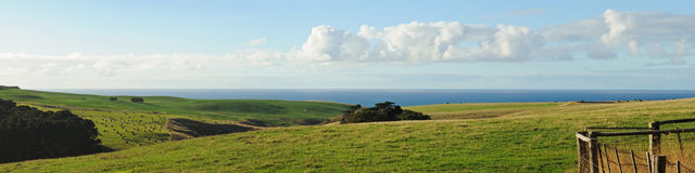 Panorama of farmland at Flinders Royalty Free Stock Photography
