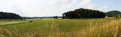 Panorama of field Stock Images