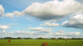 Panorama of field with haystacks near the forest under blue sky with white clouds in slowmotion. 1920x1080. stock video footage