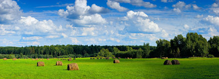 Panorama of field with haystacks under clouds Royalty Free Stock Images