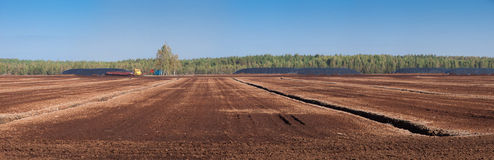 Panorama of the field with peat. Stock Image