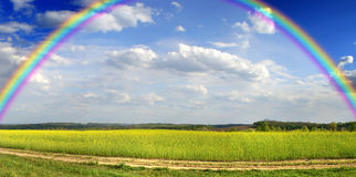 Panorama of the field with rainbow Stock Photo