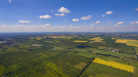 A panorama of a field of summer days Stock Photography