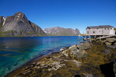 Panorama by fjord Royalty Free Stock Photos