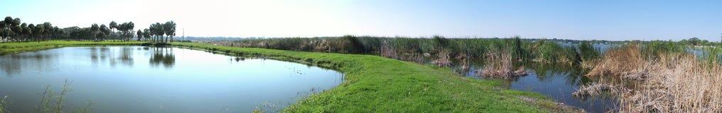 panorama- florida lake Royaltyfri Fotografi