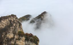 Foggy Mountain in Mixed Autumn forest panorama Stock Image