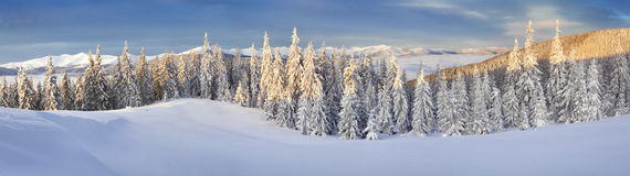 Panorama of foggy winter landscape in the mountains royalty free stock photos