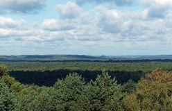 Panorama in the Fontainebleau forest Royalty Free Stock Image