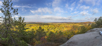 Panorama of a Forest in Fall Colour - Ontario, Canada. Panorama of a Mixed Forest in Autumn From a Rocky Lookout - Algonquin Provincial Park, Ontario, Canada Royalty Free Stock Photo
