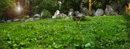 Panorama of a forest glade with granite boulders lying in a row Stock Photo