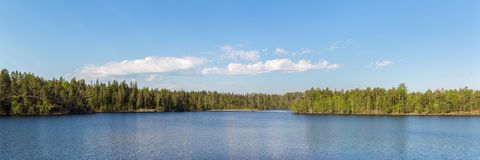 Panorama of a forest lake Royalty Free Stock Images