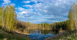 Panorama of a forest lake in the rays of the evening sun. Royalty Free Stock Photography