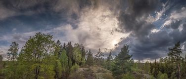Panorama of a forest landscape during thunderstorms stock photo