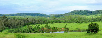 Panorama of the forest and mountain landscape view Stock Images