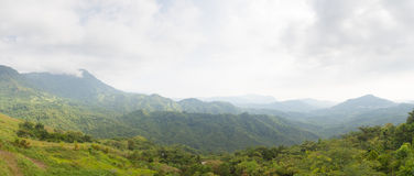 Panorama forest and mountain. Royalty Free Stock Image