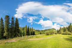 Panorama of the forest and sky in Kazakhstan Royalty Free Stock Photos