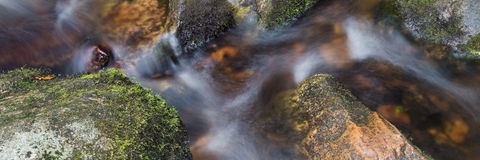Panorama format detail of flowing stream over rocks. In forest royalty free stock photo