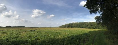 Panorama från jordbruksmark Arkivbilder
