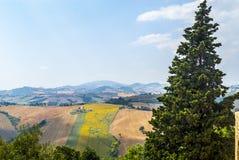 Panorama från Piticchio (Ancona) Royaltyfria Foton