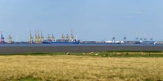 Panorama för Bremerhaven behållareterminaler Arkivfoto