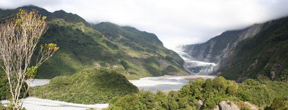 Panorama - Franz Josef glacier, New Zealand royalty free stock images
