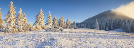 Panorama of the frosty morning in winter mountains. Royalty Free Stock Photos