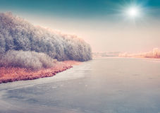 Panorama of the frozen pond in the city park. Royalty Free Stock Image