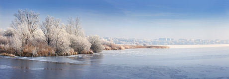 Panorama of the frozen pond Stock Images