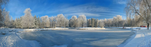 Panorama of the frozen pond Stock Photography