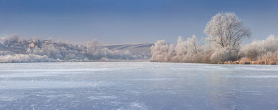 Panorama of frozen pound. Royalty Free Stock Photos
