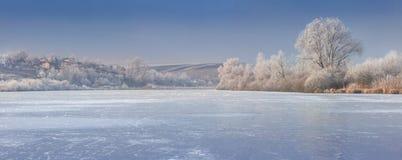Panorama of frozen pound. Royalty Free Stock Photos