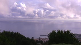 Panorama of Funchal city and Atlantic ocean. Atlantic ocean, tree tops and coast city of Funchal city view from the mountain in Madeira in the evening stock video