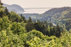 Panorama of Fundy National Park. New Brunswick, Canada Royalty Free Stock Photo