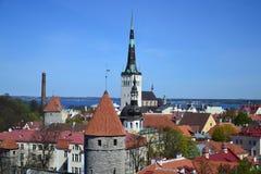 Panorama gamla Tallinn royaltyfri fotografi