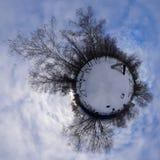 Panorama 360 gebieden voor honden in de winter Royalty-vrije Stock Foto