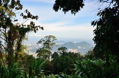 Panorama of George Town Royalty Free Stock Photos