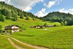 Panorama german alps Royalty Free Stock Photo