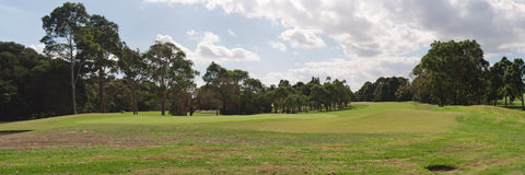 Panorama of the golf course Royalty Free Stock Image