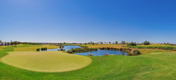 Panorama of the golf course. On the lake. Stock Image