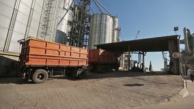 Panorama of grain trucks driving to unload at silo on elevating hydraulic platform unloader. Grain crops transshipment. At big sea terminal at seaport stock video footage