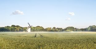 Panorama of a grainfield and a windmill in the morning sun with fog. Bayreuth, Germany. Big Panorama of a grainfield in the morning sun with fog. Bayreuth Royalty Free Stock Image