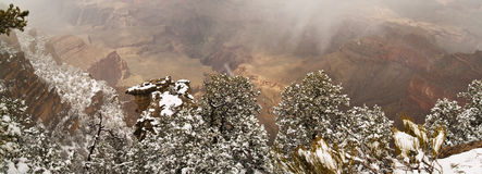 Panorama Of Grand Canyon with Snow Stock Image